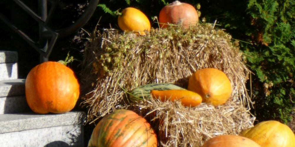 Jesienny Kiermasz w Szkole