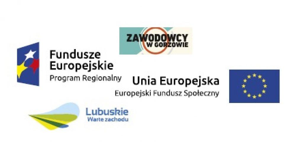 Projekty partnerskie Miasta Gorzów - Zawodowcy w Gorzowie