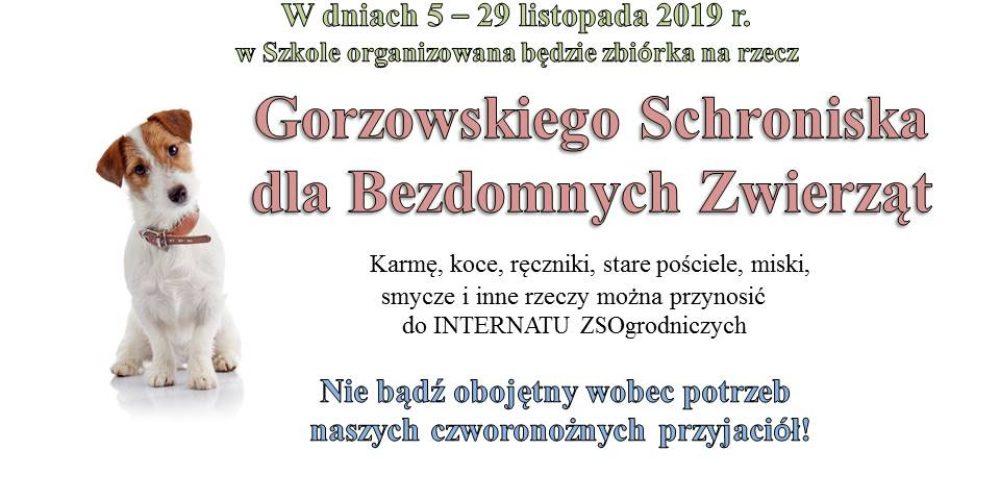 Zbiórka na rzecz Gorzowskiego Schroniska dla Bezdomnych Zwierząt