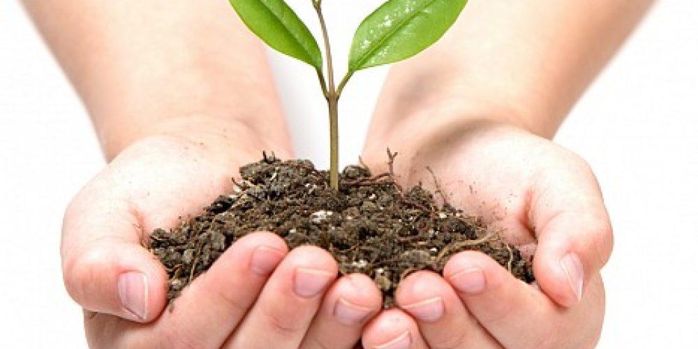 """Konkurs """"Integrowana Ochrona Roślin – Wizja Młodego Pokolenia"""""""